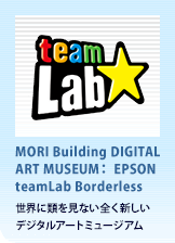 MORI Building DIGITAL ART MUSEUM EPSON teamLab Borderless:2018.6.21 OPEN